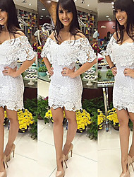 VOIN   Women's Lace White Dresses , Vintage / Sexy / Bodycon / Beach / Casual / Lace / Party Cape Short Sleeve