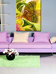 Oil Paintings One Panel Modern Flower Butterfly Hand-painted Canvas Ready to Hang