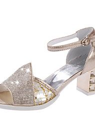 Women's Shoes  Chunky Heel Comfort Sandals Party & Evening/Dress/Casual Silver/Gold