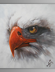 Oil Painting Modern Abstract Eagle Hand Painted Canvas with Stretched Frame