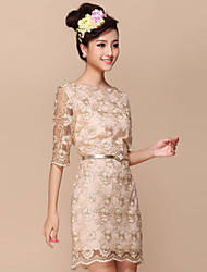 Women's Vintage Party Micro Elastic Short Sleeve Above Knee Dress (Lace)