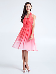 Knee-length Chiffon Bridesmaid Dress - Color Gradient A-line Halter Plus Size / Petite with