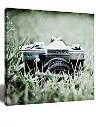 star® visuels font souvenirs - esthétisme appareil photographique sur le mur art de toile de pelouse prêt à accrocher
