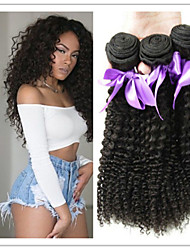 3Pcs/Lot Kinky Curly Brazilian Kinky Curly Hair Grade 8A Unprocessed Brazilian Deep Curly Virgin Hair Free Shipping