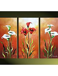 ручная роспись умный каллы лилии домой стены искусства украшения картина маслом на холсте 3шт / набор без рамки