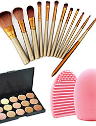 12 Makeup Brushes Set Nylon Professional / Travel / Eco-friendly Face / Eye / Lip Others