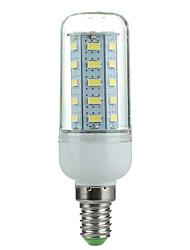 4W E14 Ampoules Maïs LED Pivotant 36 SMD 5730 360 lm Blanc Froid AC 100-240 V 1 pièce