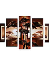 Hand-Painted Art Wall Decor Africa Nature Tree Oil Painting on Canvas  5pcs/set (Without Frame)