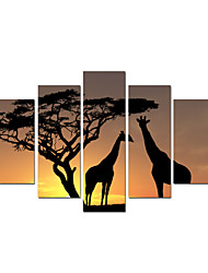 VISUAL STAR®Giclee Group Deer Painting Deer Sunset Stretched Canvas Wall Art