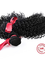 EVET Brazilian Curly Virgin Hair 2Pcs Brazilian Virgin Hair Natural Color Kinky Curly Virgin Hair Human Hair Weave Curly