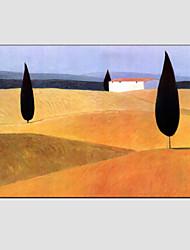Ölgemälde moderne Landschaft, Leinwand, Material mit gestreckten Rahmen bereit, hängen Größe: 60 * 90cm.