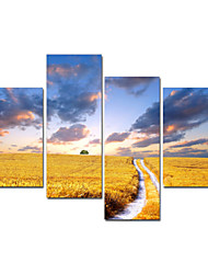 VISUAL STAR®Wheat Natural Stretched Canvas Printing For Hot Sale