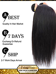 Brazilian Virgin Hair Straight 10 Inch 3pcs/lot 100g/pcs Cheap Brazilian Hair 100% Human Hair