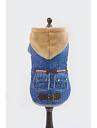 Dog Hoodie Blue Winter Jeans