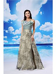 ts couture® noche formal del vestido de una línea festoneada palabra de longitud organza / satinado con criss cross