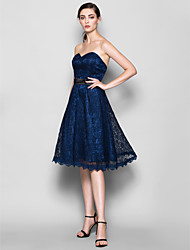 Lanting Bride® Knee-length Lace Bridesmaid Dress - A-line Sweetheart Plus Size / Petite with Lace