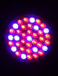 HRY® 2W E27 38LED 100LM 28Red+10Blue Plant Grow Light Bulb Garden Hydroponic Lamp(AC220V)