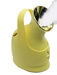 Portable Nanoparticles Spray Facial Steamer