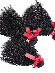 EVET Afro Kinky Curly Hair Extensions Brazilian Human Hair Kinky Curly Weave Bundles 3pcs/lot 100g/pc Free Shipping