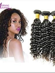 3Pcs/Lot Brazilian Kinky Curly Virgin Hair,Shine Hair Products Human Hair Weaves #1B