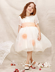 Girl White Fairy Princess Dresses