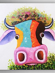 Oil Painting Color Young Cow Hand Painted Canvas with Stretched Framed Ready to Hang