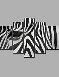 esticado pintura emoldurado óleo pintados à mão sobre a arte da parede da lona moderna zebra branco preto abstrato casa deco cinco painéis