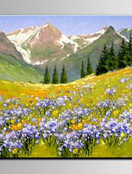 flor de lavanda iarts®valley bela paisagem