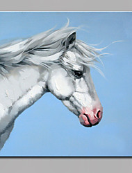 Single Modern Abstract Pure Hand Draw Ready To Hang  Decorative Horse Oil Painting