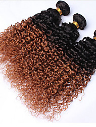 3 Pieces Kinky Curly Human Hair Weaves Brazilian Texture Human Hair Weaves Kinky Curly