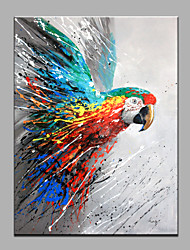 Single Modern Abstract Pure Hand Draw Ready To Hang Decorative The Parrot Oil Painting