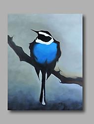 pronto para pendurar animais arte óleo pintura da lona da parede da arte pop stethed pintados à mão pássaros azuis casa deco um painel