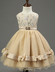 Girl's champagne-color Dress , Ruffle / Lace / Bow Cotton / Polyester / Others All Seasons