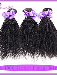 Natural Color Hair Weaves Malaysian Texture Kinky Curly 6 Months 3 Pieces hair weaves