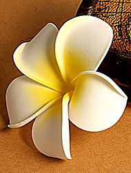 Seaside Beach Frangipani Flowers Hairpins Hair Accessories Brooch