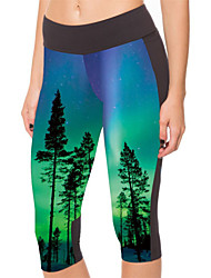 Yoga Pants 3/4 calças justas Compressão Alto Elasticidade Alta Wear Sports Verde Mulheres Outros Ioga / Fitness