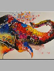 Pintados à mão Animal Horizontal,Modern 1 Painel Pintura a Óleo For Decoração para casa