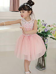 Girl's Green / Pink Dress,Lace Polyester Summer