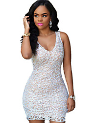 Women's  Embroidered Lace Nude Mini Dress