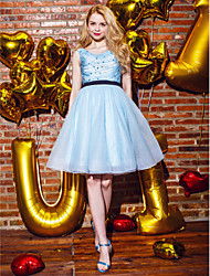 TS Couture Cocktail Party Homecoming Prom Holiday Company Party Dress - Vintage Inspired Ball Gown Jewel Knee-length Organza withBeading