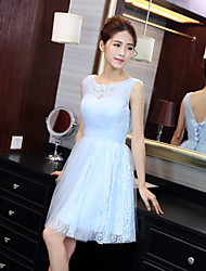 Knee-length  / Tulle Bridesmaid Dress - Sky Blue Jewel