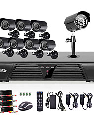 Liview® Full 960H 8CH DVR and Outdoor 800TVLine Day/Night Camera System