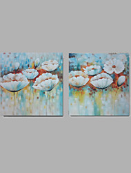 Beautiful Flowers 2pcs/set Handmade Modern Abstract Oil Painting On Canvas Wall Art Gift ,home office Decoration
