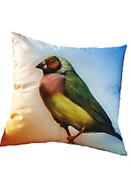 3D Design Print Animal Birds Decorative Throw Pillow Case Cushion Cover for Sofa Home Decor Polyester Soft Material
