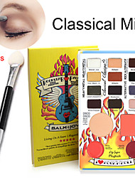 16pcs eyeshadow palette professionnelle + 10pcs double éponge bâton (ombre brosse oeil + pinceau à lèvres)