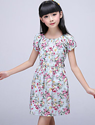 Girl's Blue / White Dress Cotton Summer