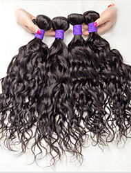 3 Boudles Human Hair Wet and Wavy Virgin Brazilian Hair Raw Brazillian Hair Loose Curly Brazilian Virgin Hair