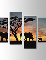 Animal Elephant Canvas Print Four Panels Ready to Hang,Vertical For Living Room With Cotton Drawing(No Frame)