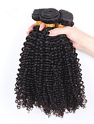 3Pcs/Lot brazilian curly virgin hair unprocessed brazilian kinky curly virgin hair brazilian deep curly human hair