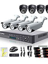 Liview® 700TVL Outdoor Day/Night Security Camera and 8CH HDMI 960H Network DVR System